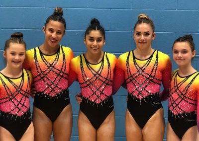 The Academy - winners of the British Gymnastics Women's Team Championship four times